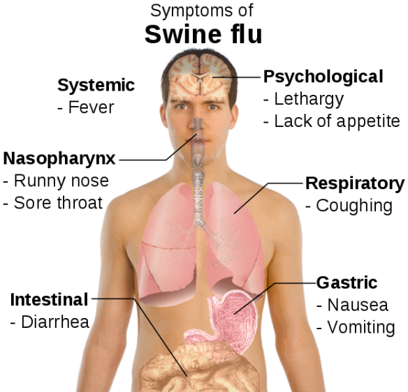 symptoms_of_swine_flu_svg
