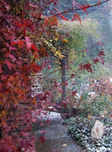 Fall and winter blend by late November in the Sierras...