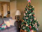 2014 Christmas 2