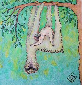SlothFamily